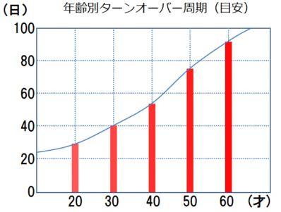 年齢によるターンオーバー周期の変化