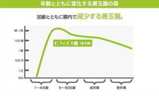 年齢とともに変化する善玉菌の数
