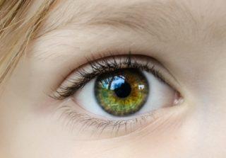 まつ毛が美しい目の女性