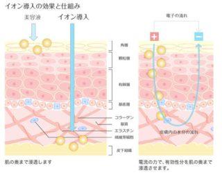 イオン導入の効果と仕組み