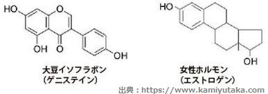 エストロゲン_化学構造