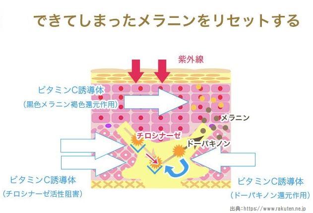 ビタミンC誘導体還元作用