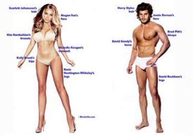 女性と男性の体のちがい