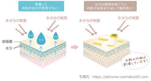 乾燥による皮脂の過剰分泌